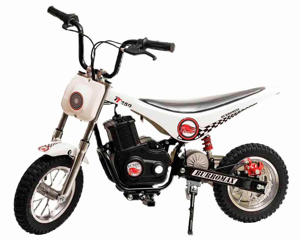 Electric Minibike, TT250 (Color: White)