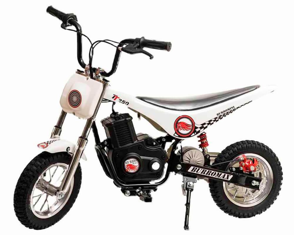 Electric Minibike, TT250 (Color: White)