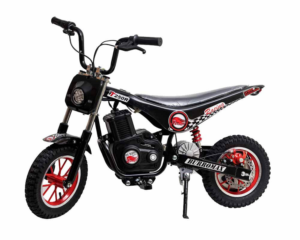 Electric Minibike, TT250R Lithium Ion Powered, (Color: Black)